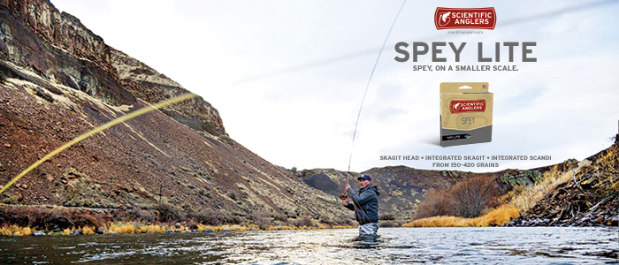 Scientific Anglers Spey Lite