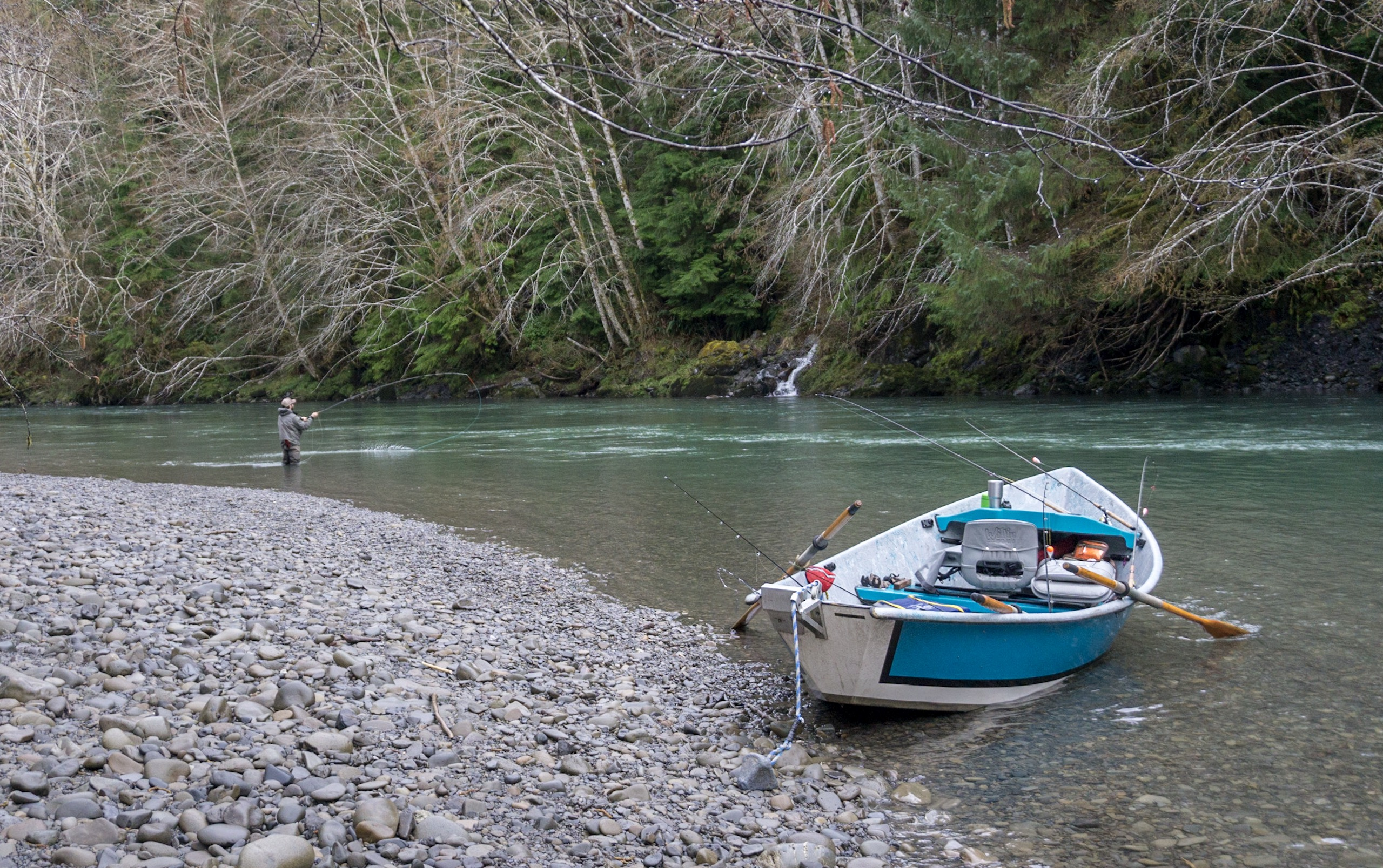 OPINION: Can Washington's steelheaders rise to the challenge of our steelhead crisis?