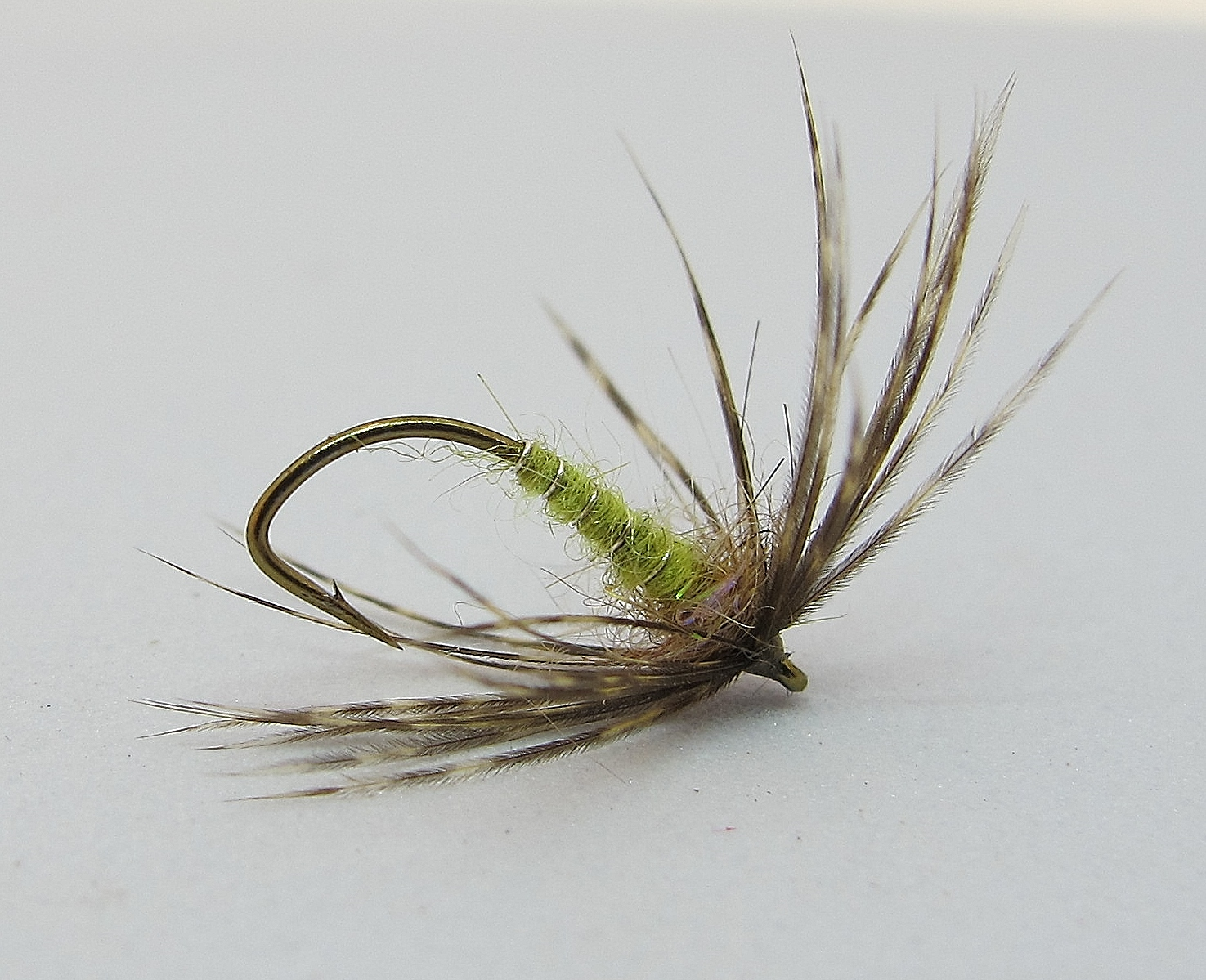 Hatches: Spotted Sedge